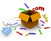 Domain Name Registration + Unlimited Web Hosting Package