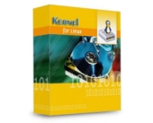 Kernel Recovery for Linux (Ext2, Ext3) – Corporate License